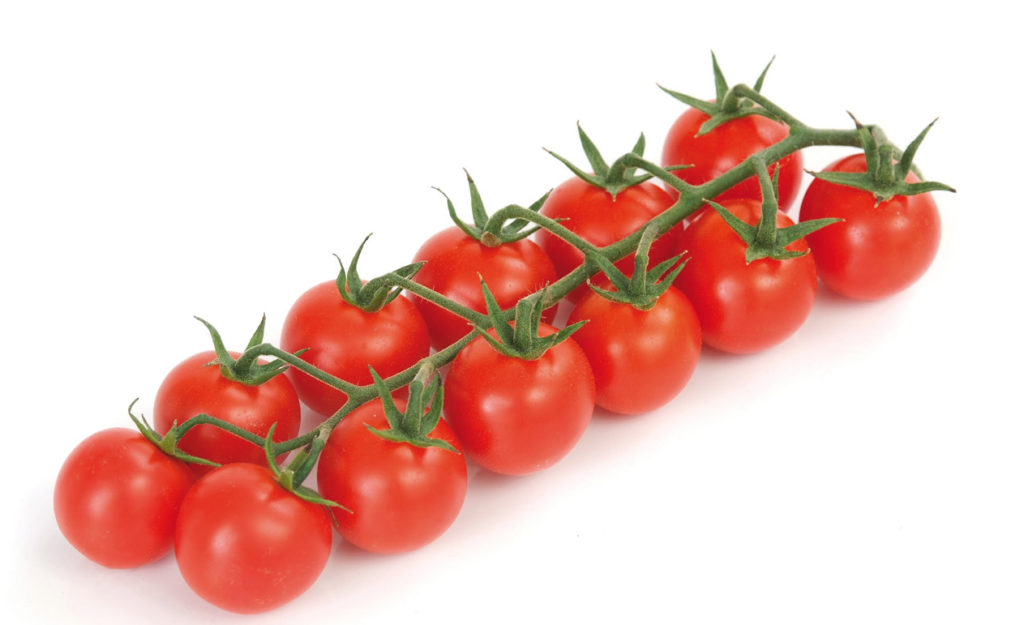 pomodoro ciliegino-02